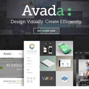 Avada-Responsive-Multi-Purpose-WordPress-Theme.png